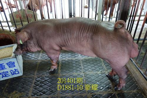 中央畜產會201401期D1881-10拍賣照片
