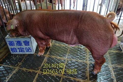 中央畜產會201401期D1662-02拍賣照片