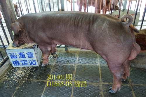 中央畜產會201401期D1665-03拍賣照片