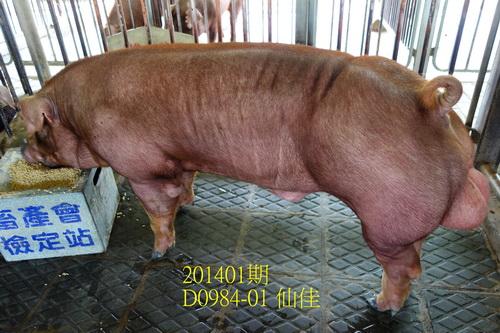 中央畜產會201401期D0984-01拍賣照片