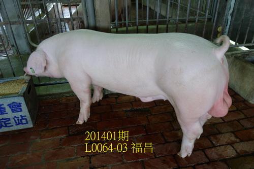 中央畜產會201401期L0064-03拍賣照片