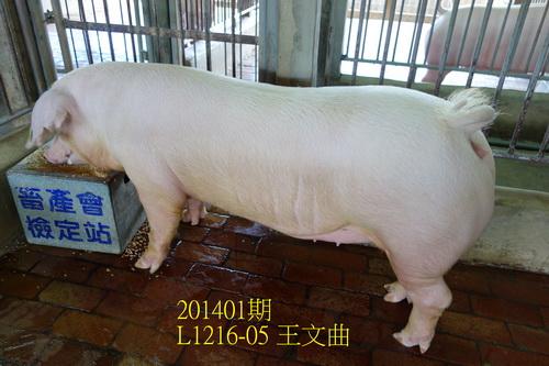 中央畜產會201401期L1216-05拍賣照片