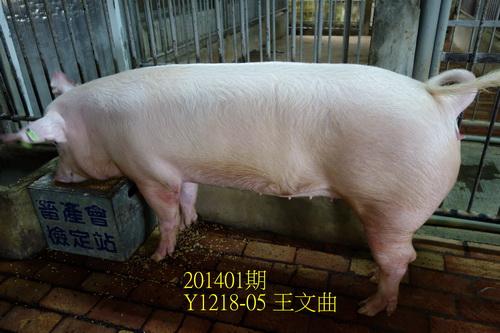 中央畜產會201401期Y1218-05拍賣照片