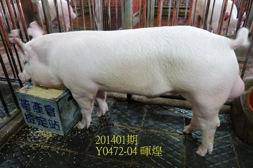 中央畜產會201401期Y0472-04拍賣照片