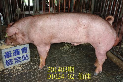 中央畜產會201403期D1024-02拍賣照片