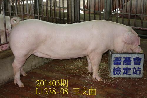 中央畜產會201403期L1238-08拍賣照片