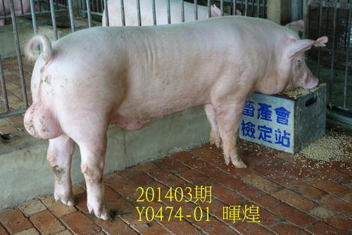 中央畜產會201403期Y0474-01拍賣照片