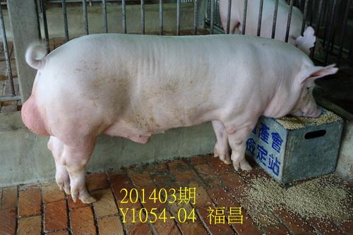 中央畜產會201403期Y1054-04拍賣照片