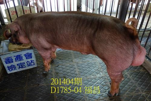 中央畜產會201404期D1785-04拍賣照片