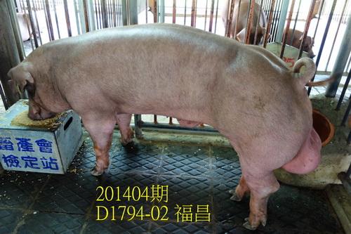中央畜產會201404期D1794-02拍賣照片