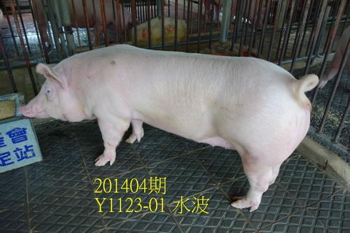 中央畜產會201404期Y1123-01拍賣照片
