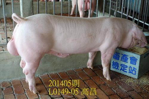 中央畜產會201405期L0149-05拍賣照片