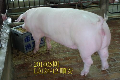 中央畜產會201405期L0124-12拍賣照片