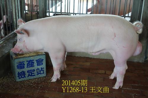 中央畜產會201405期Y1268-13拍賣照片
