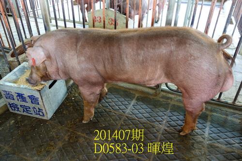 中央畜產會201407期D0583-03拍賣照片