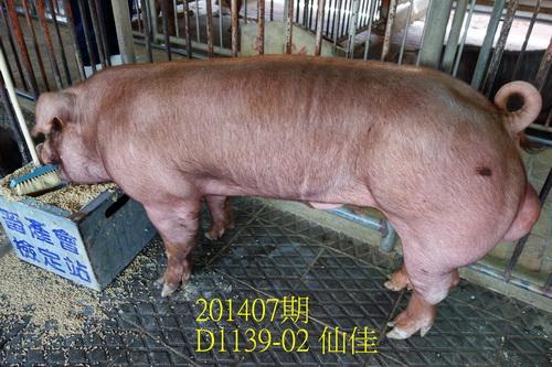 中央畜產會201407期D1139-02拍賣照片