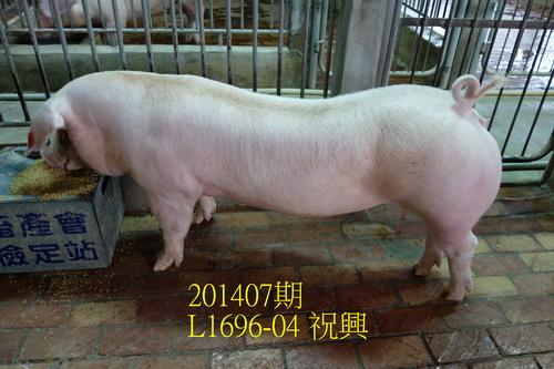 中央畜產會201407期L1696-04拍賣照片