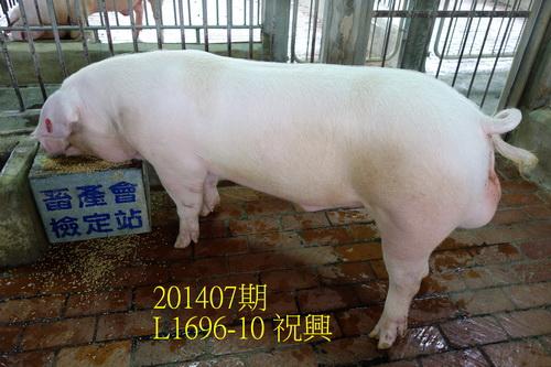 中央畜產會201407期L1696-10拍賣照片