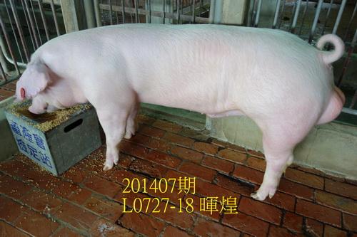 中央畜產會201407期L0727-18拍賣照片
