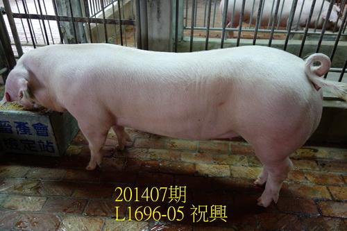 中央畜產會201407期L1696-05拍賣照片