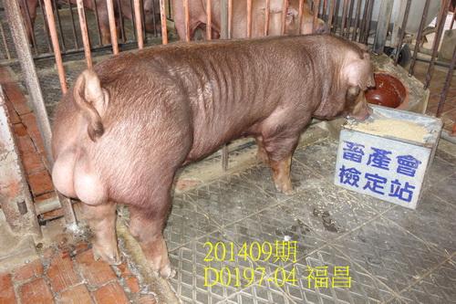 中央畜產會201409期D0197-04拍賣照片
