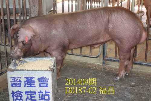 中央畜產會201409期D0187-02拍賣照片
