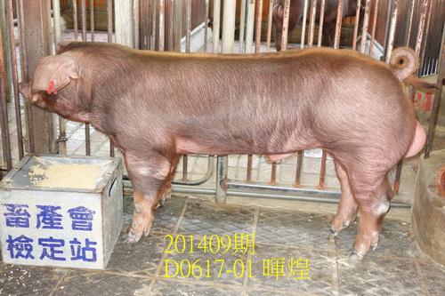 中央畜產會201409期D0617-01拍賣照片