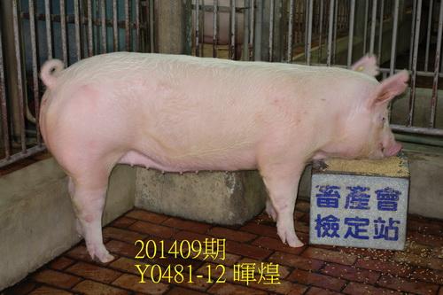 中央畜產會201409期Y0481-12拍賣照片
