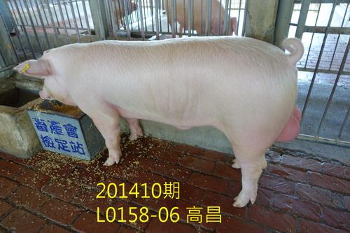 中央畜產會201410期L0158-06拍賣照片