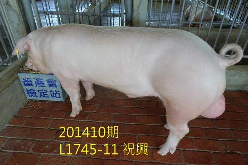 中央畜產會201410期L1745-11拍賣照片