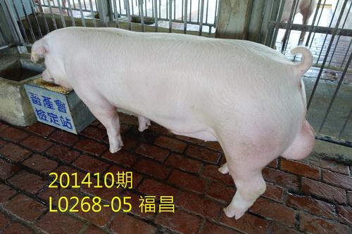 中央畜產會201410期L0268-05拍賣照片