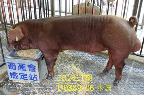 中央畜產會201411期D0889-06拍賣照片