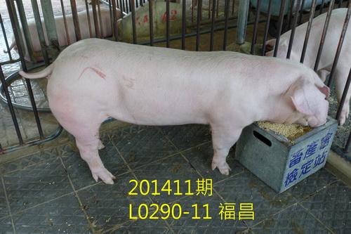 中央畜產會201411期L0290-11拍賣照片