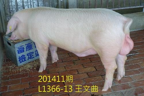 中央畜產會201411期L1366-13拍賣照片