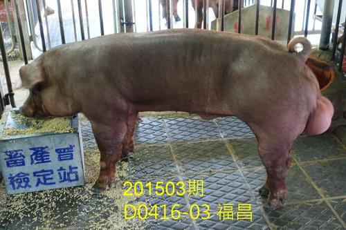 中央畜產會201503期D0416-03拍賣照片