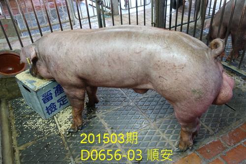中央畜產會201503期D0656-03拍賣照片