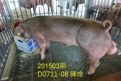 中央畜產會201503期D0711-08拍賣照片