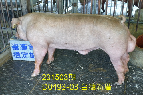 中央畜產會201503期D0493-03拍賣照片