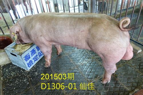 中央畜產會201503期D1306-01拍賣照片