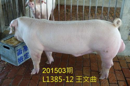 中央畜產會201503期L1385-12拍賣照片