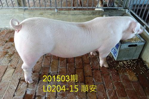 中央畜產會201503期L0204-15拍賣照片
