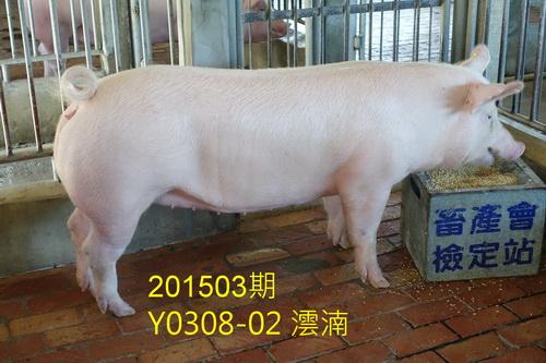 中央畜產會201503期Y0308-02拍賣照片