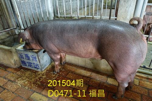 中央畜產會201504期D0471-11拍賣照片