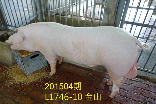 中央畜產會201504期L1746-10拍賣照片