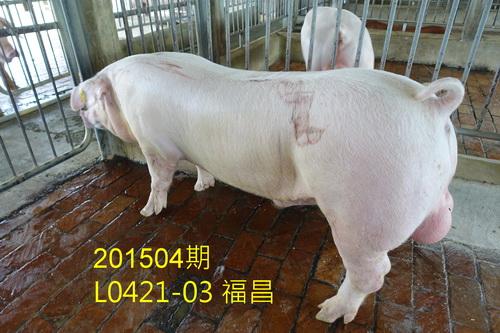 中央畜產會201504期L0421-03拍賣照片