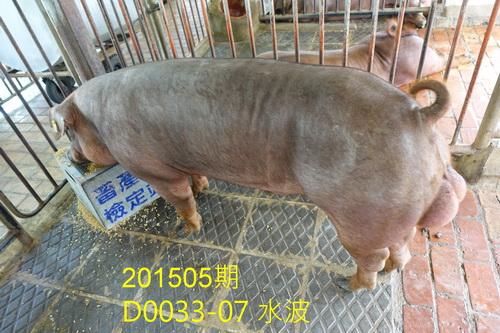 中央畜產會201505期D0033-07拍賣照片