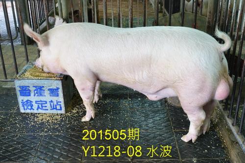 中央畜產會201505期Y1218-08拍賣照片
