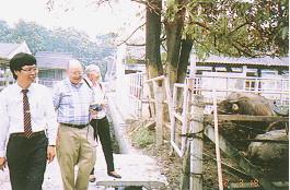 水牛保種環境- 美國喬治亞大學獸醫學院院長夫婦參觀試驗用水牛 (畜產種原庫及基因交流p38)