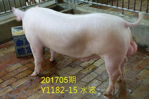 中央畜產會201705期Y1182-15拍賣照片