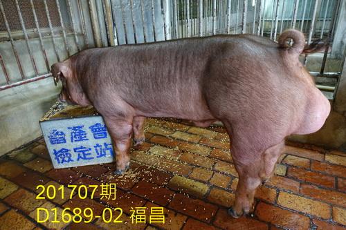 中央畜產會201707期D1689-02拍賣照片